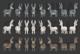 donkey colors