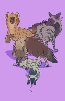 hyena_day_2019